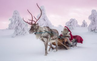 Inghams Lapland Santa breaks 2022