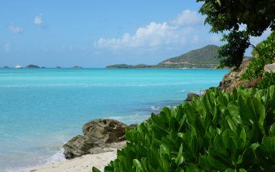 UK digital nomads invited to WFH in Antigua